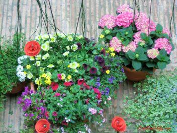 GIRONA Temps de Flors «Время Цветов/Фестиваль Цветов»