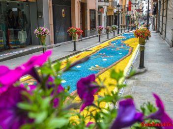 Ковры из цветов в Бланесе, 2018 (Les Catifes de Flors del Corpus a Blanes, 2018)