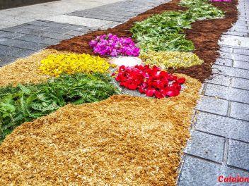 Ковры из цветов в Ллорет-де-Мар, Les Catifes de Flors del Corpus a Lloret de Mar