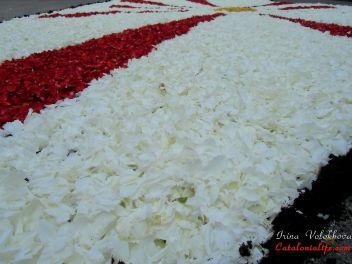 Фестиваль «Ковры из цветов» в Бланесе 2013 г. (Estores de Flors de Raval. Blanes 2013)