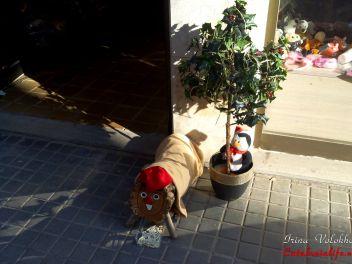 Рождество,Испания,Каталония,обычаи,традиции,празднование,улица,украшенная,Новый Год
