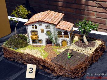 VI Ежегодный Конкурс Бонсай в Бланесе 2015 (IV Concurso y Exposición de Bonsais a Blanes 2015)